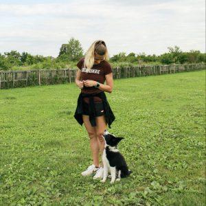 Udruga za školovanje ljudi i pasa Alfa Canis